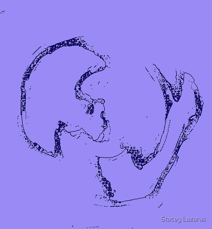 bone joe v by Stacey Lazarus