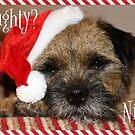 Border Terrier Christmas Card - Naughty? Nice? by ScruffyLT