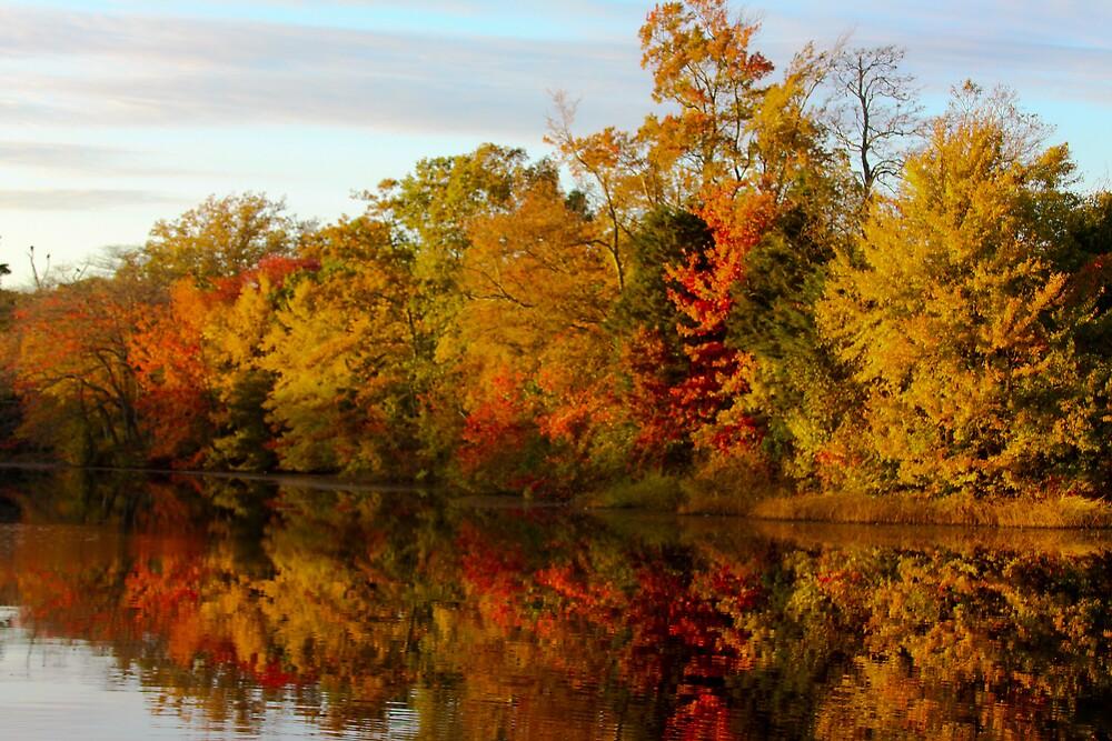 Fall  by MrLoupos