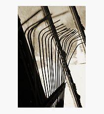 Sepia Tone Metal Rake Prongs Photographic Print