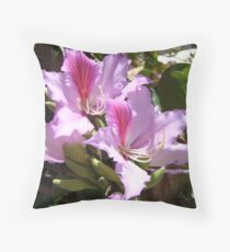 Orchid tree (bauhinia variegata/ chinensis) blossoms Throw Pillow