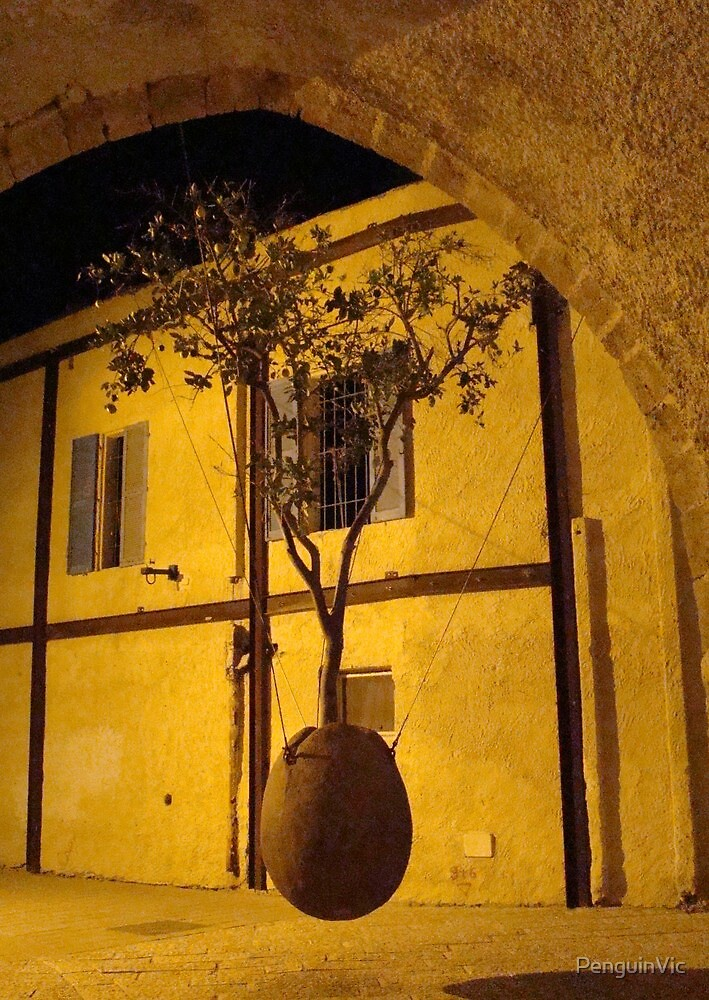 The hanging tree, Jaffa by PenguinVic