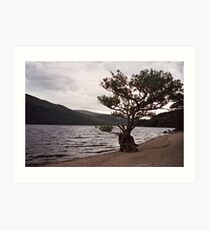 Keeping watch at Loch Lomond Art Print