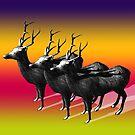 Deer by jsebouvi