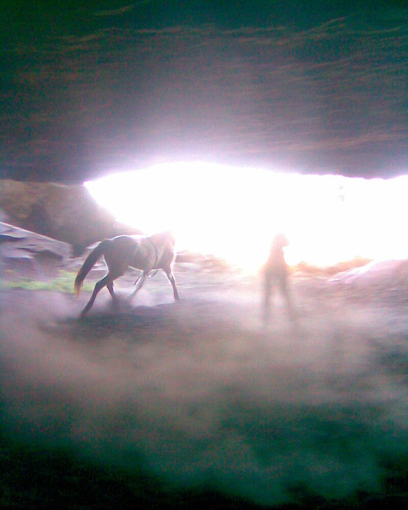 lunging in caves the new form of indoor schooling by ednaelliott
