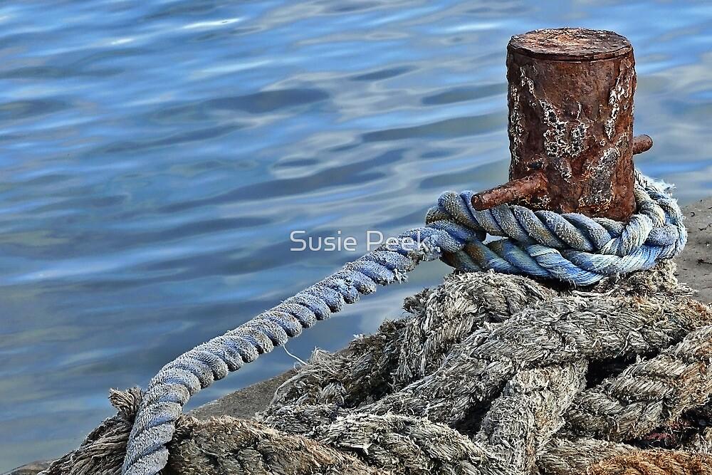 Tangles Lines ~ Lyme Regis  by Susie Peek