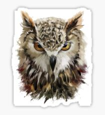 Hand Painted Owl Sticker
