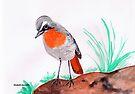 Cape robin-chat / Janfrederik by Elizabeth Kendall