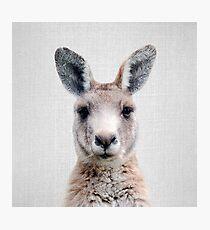 Kangaroo - Colorful Photographic Print