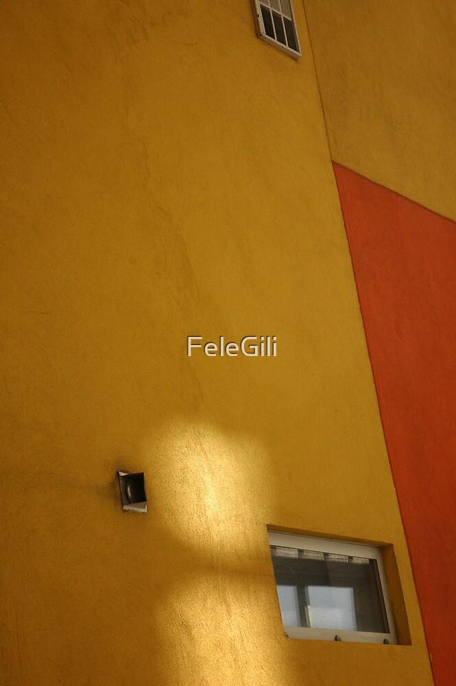 The window #1 by FeleGili
