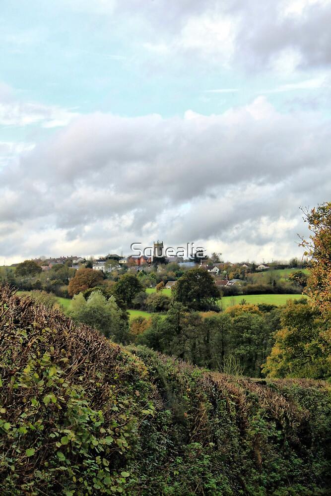Colebrooke, Devon by Squealia