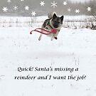 Santa Is Missing A Reindeer by CreativeEm