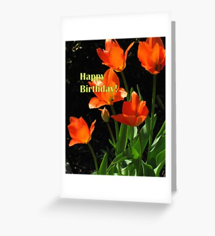 Fresh Birthday Tulips Greeting Card