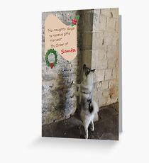Naughty Dogs This Christmas Greeting Card