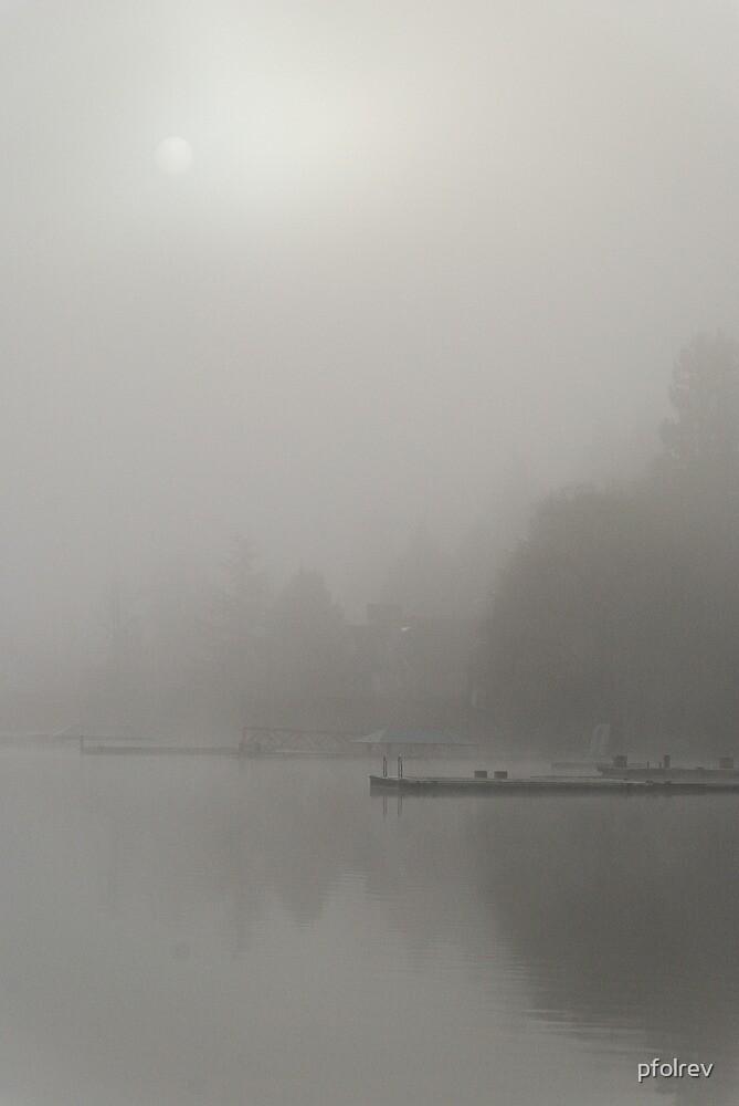 morning fog by pfolrev