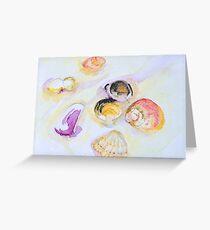 Shells - Jimmys Beach Australia Greeting Card