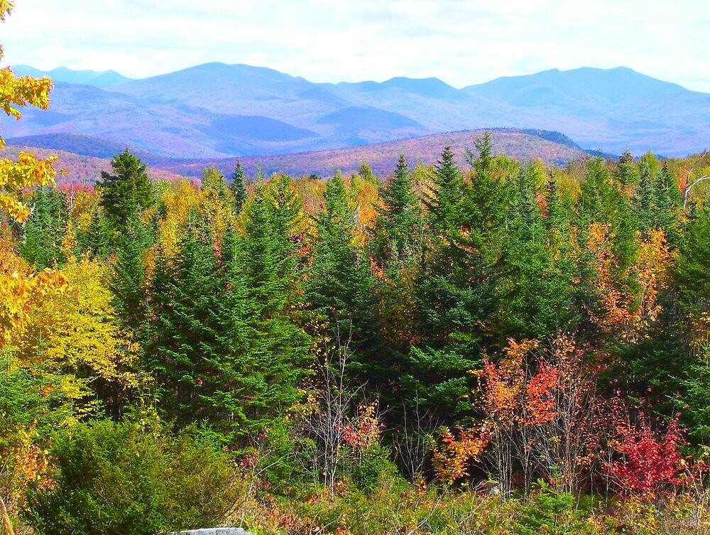 Autumn In New Hampshire I by SusanMellen