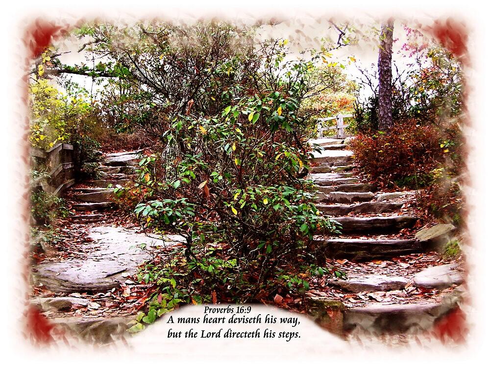 Proverbs 16:9 by loramae