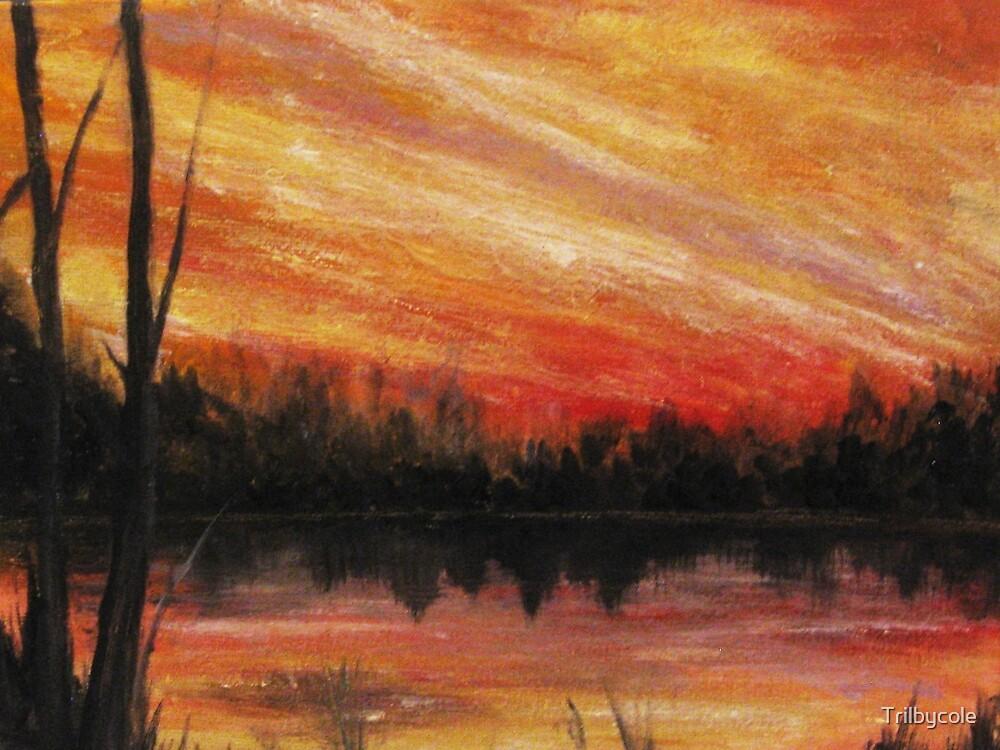 Twilight Stillness by Trilbycole