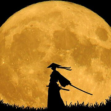 Samurai in the moonlight by Misterfreaks