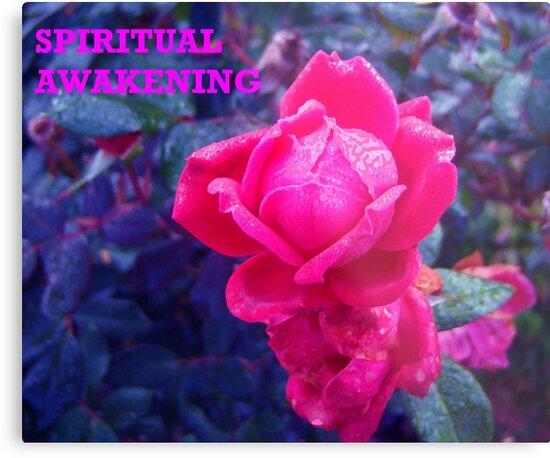 SPIRITUAL AWAKENING by trisha22