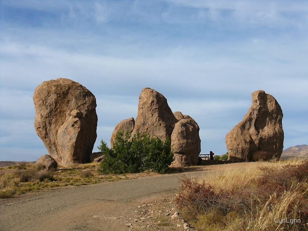 City of Rocks #4 by CynLynn