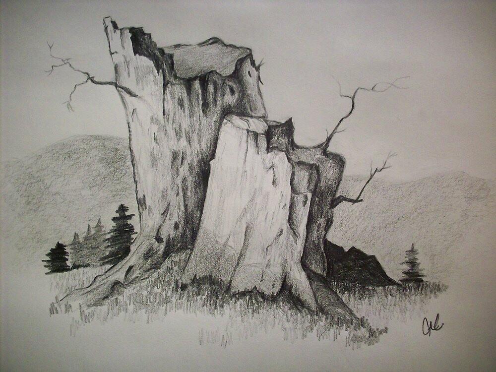 Tree Stumps by ripinamberlost