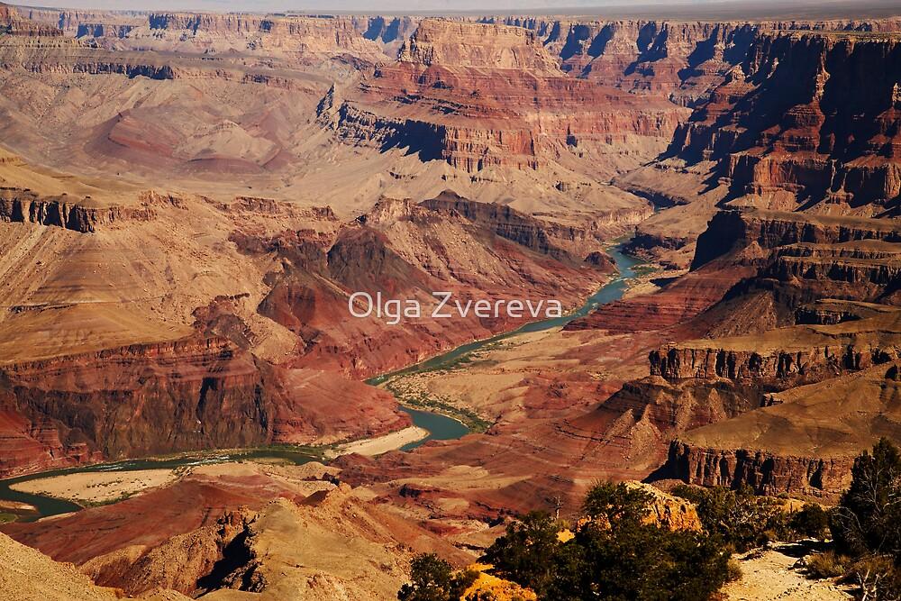 Colorado River from South Rim by Olga Zvereva