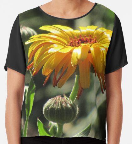 wunderschöne, gelbe Ringelblume, Blüte, Blume, Natur Chiffontop für Frauen