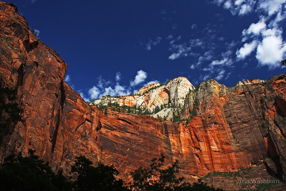 Zion National Park by Julia Washburn