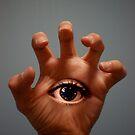 Don't Blink! by Reza Gorji Hassani