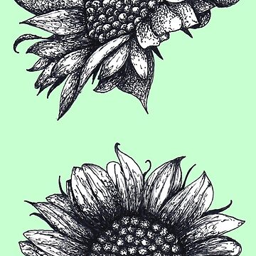 Black and White Sunflowers by Surrealist1
