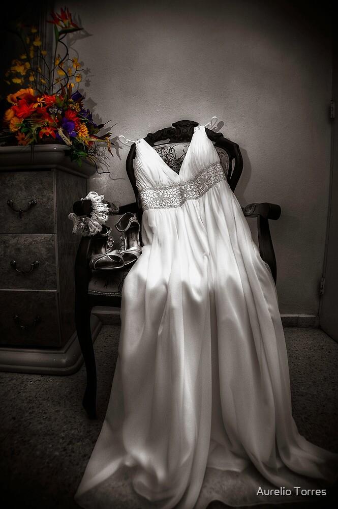The Wedding Dress by Aurelio Torres