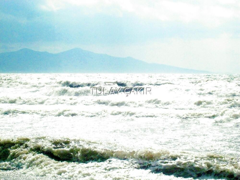 sea by tulay cakir