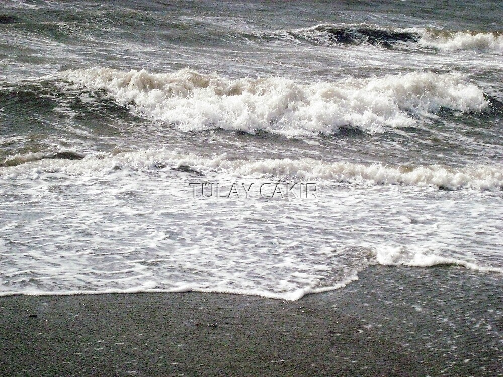waves by tulay cakir