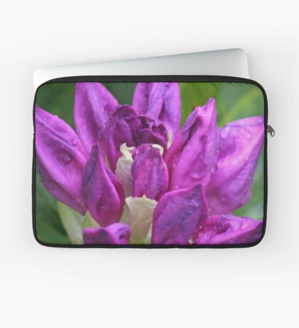 Rhodo Throw Laptop Sleeve