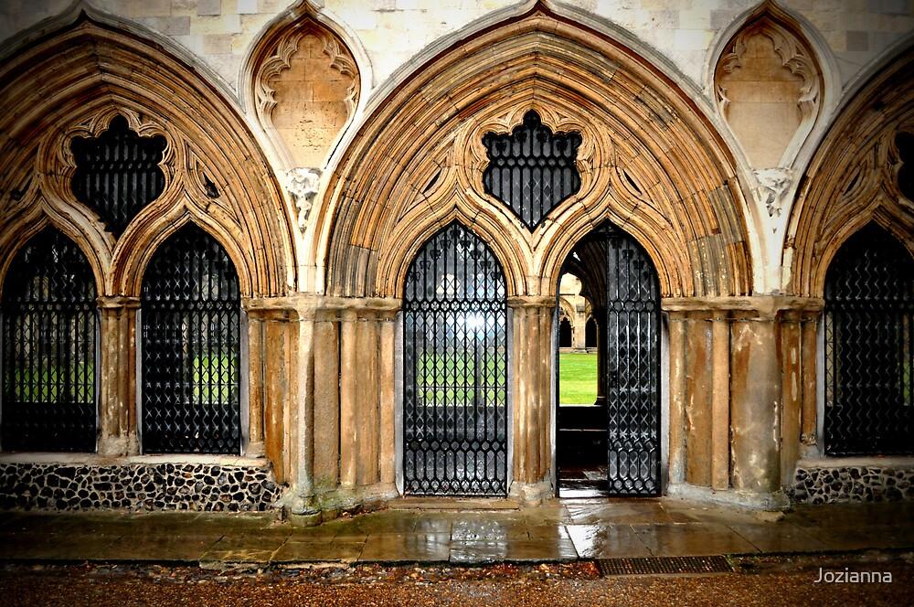 Windows & Doors by Jozianna