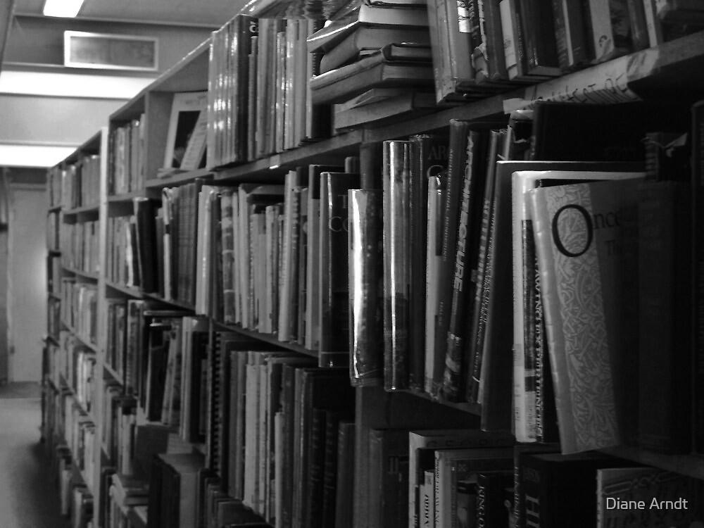 Old Book Shelf by Diane Arndt