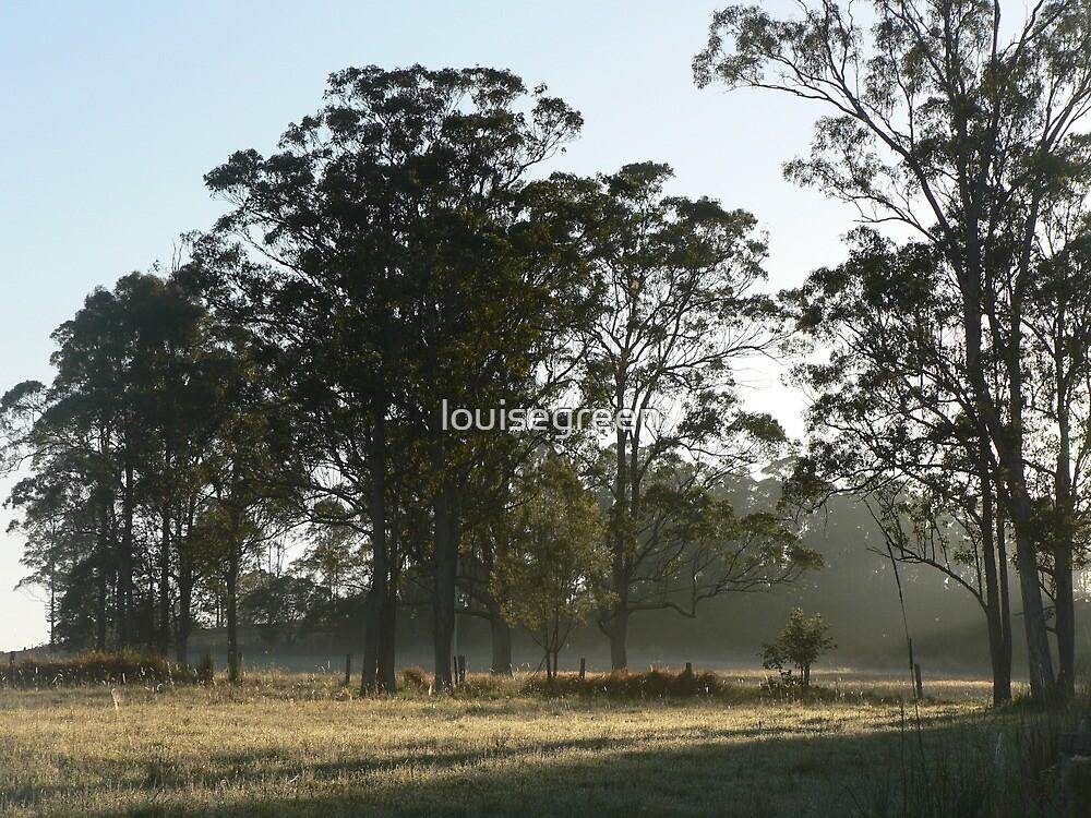 Mist & Shadows by louisegreen