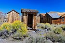 Bodie Rest Station With Flowers by photosbyflood