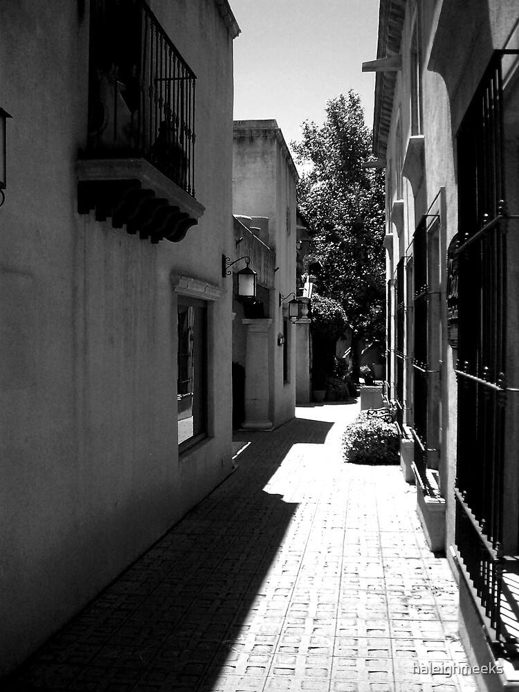 Sedona Alleyway by haleighmeeks