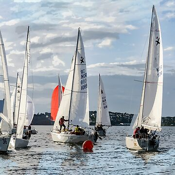 Let the Regatta Begin by ElainePlesser