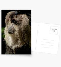 Endangered Postcards