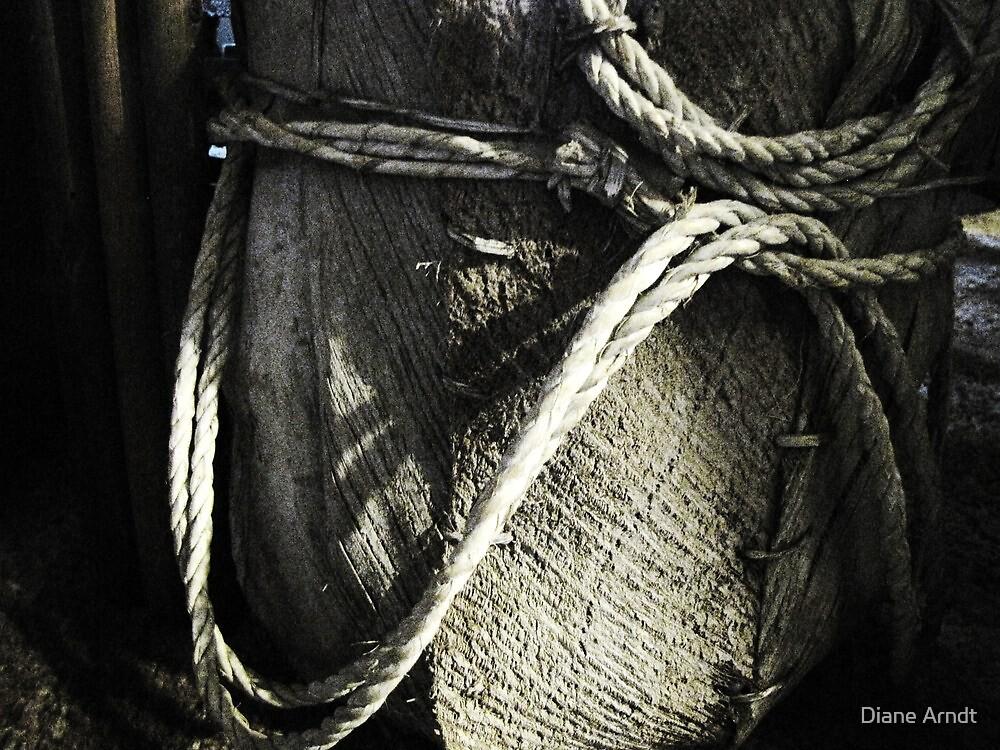 The Basket by Diane Arndt