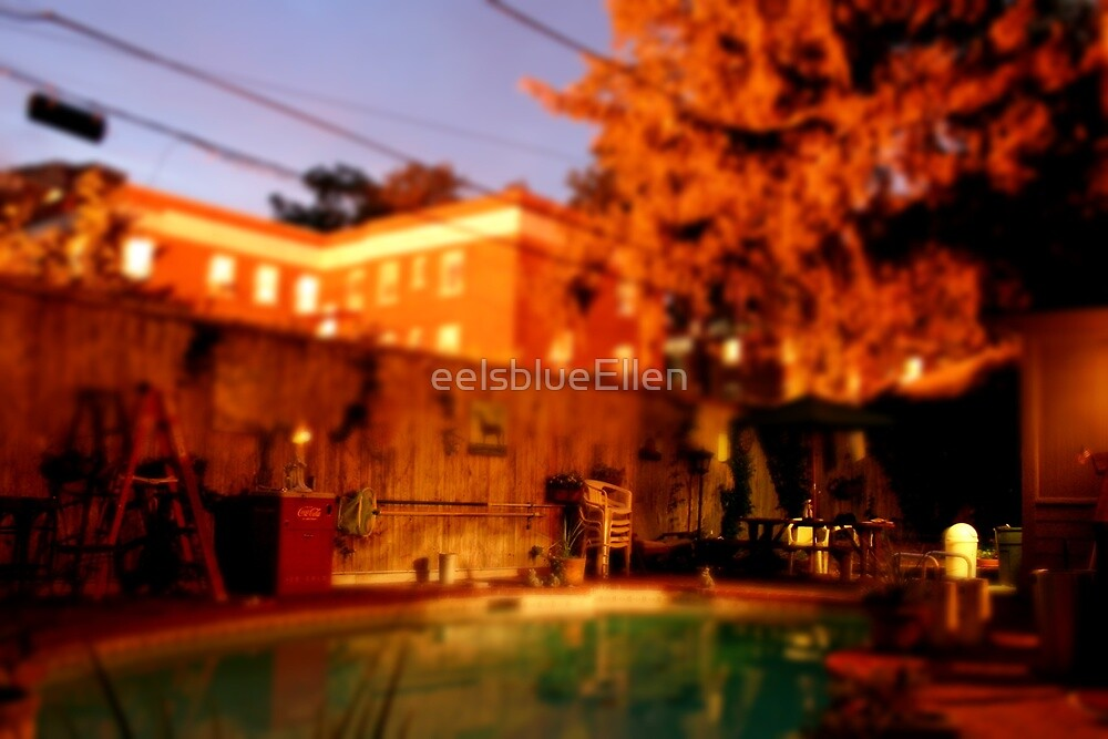 Backyard Tilt Shift by eelsblueEllen
