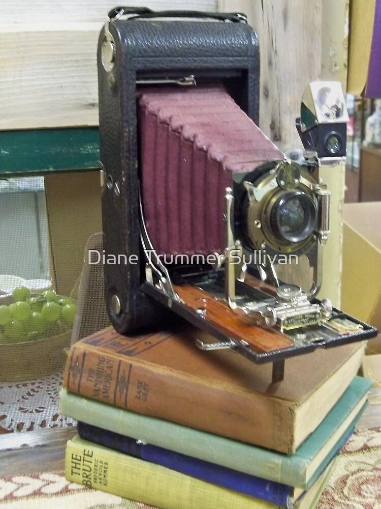Vintage Kodak Camera by Diane Trummer Sullivan
