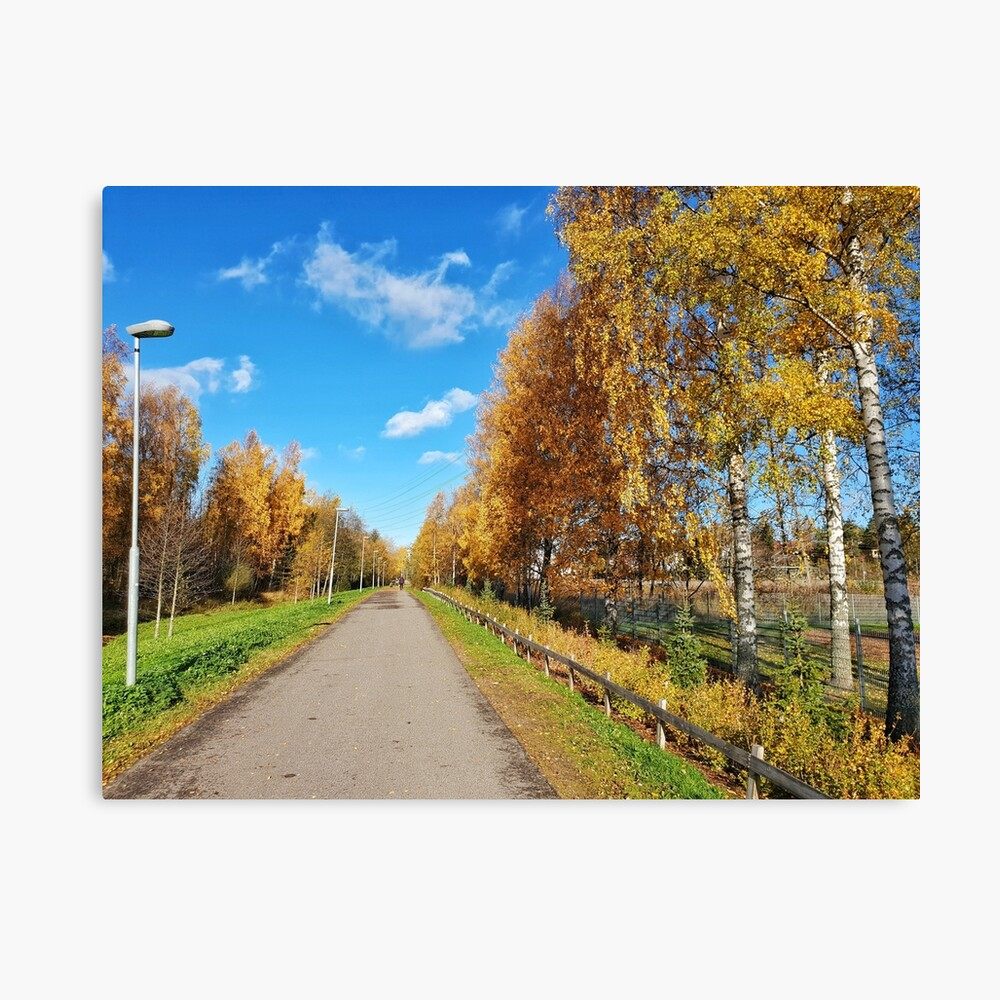Autumn Path Tree-lined golden leaves  Canvas Print
