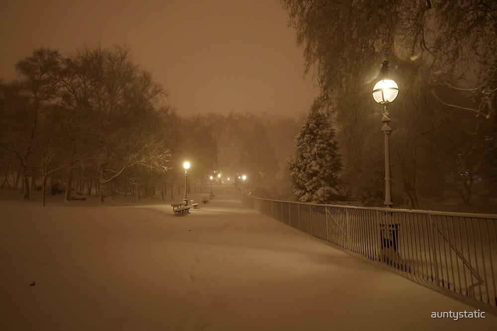 Hyde Park Snow by auntystatic
