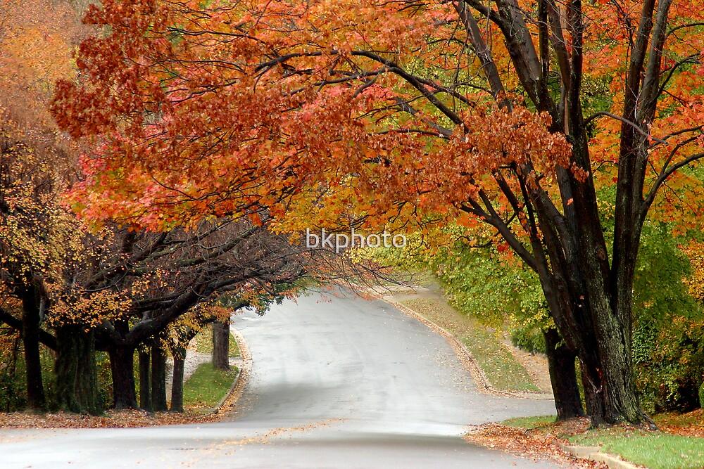Autumn Street by bkphoto