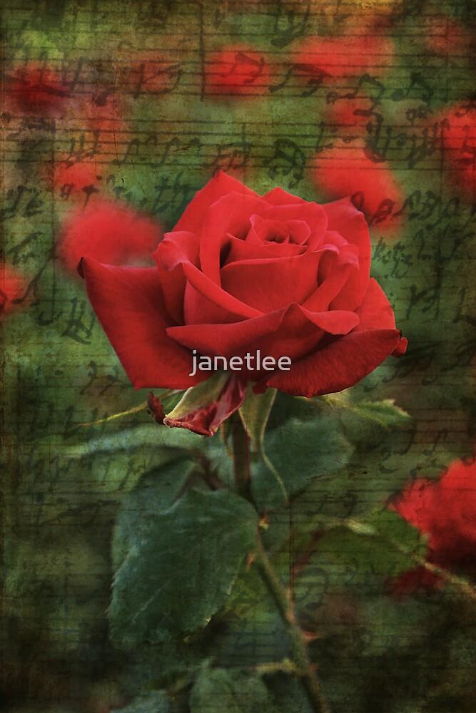 Serenade of Love by janetlee